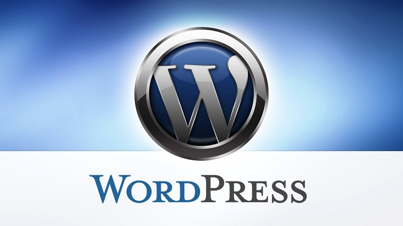 5 Reasons Why WordPress is the Best CMS for Small Businesses